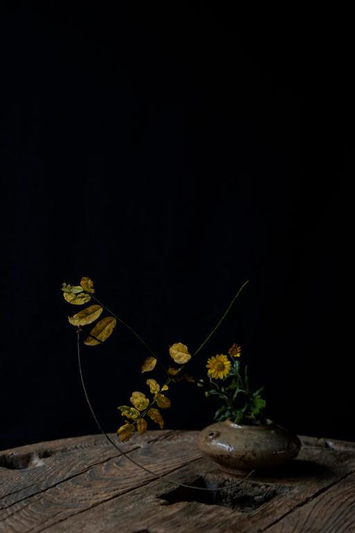 花屋 みたて01
