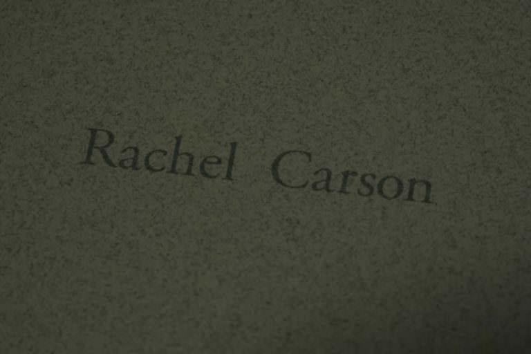 レイチェル・カーソン『センス・オブ・ワンダー』01