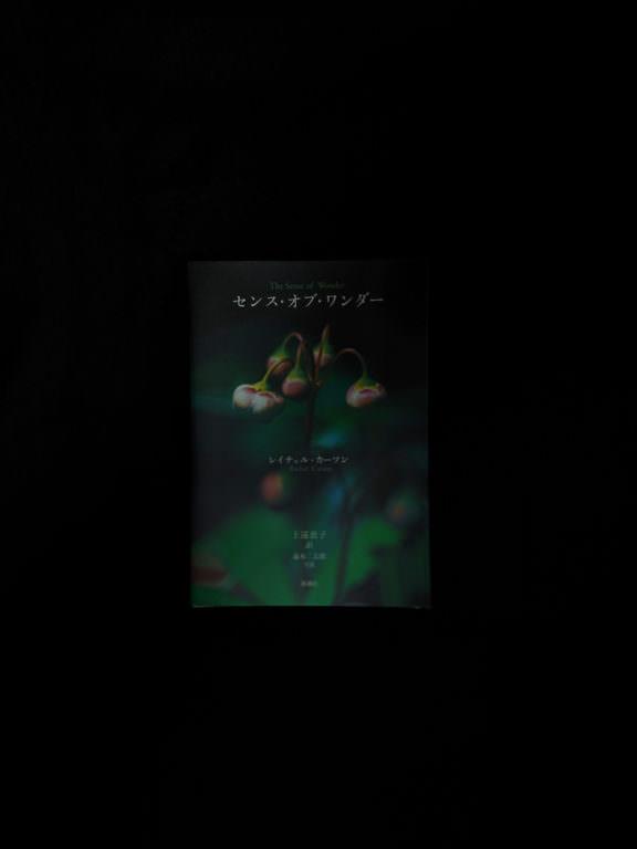 レイチェル・カーソン『センス・オブ・ワンダー』05