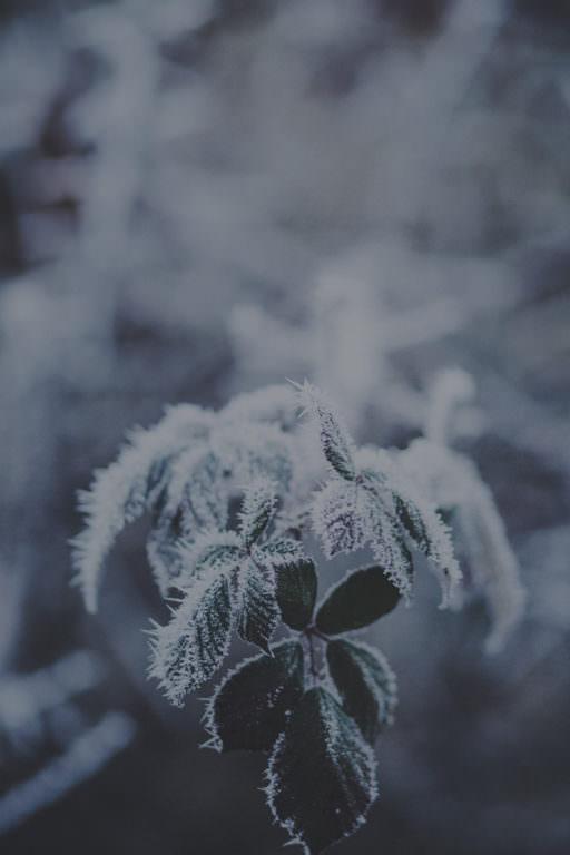 ソーラーチャクラの瞑想01