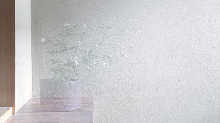 八木夕菜 SENN-03 Blanc